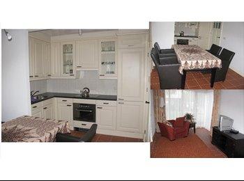 Een luxe 2 kamer appartement te huur aangeboden per 1 maart...