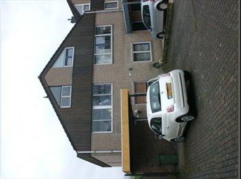 EasyKamer NL - leuke schone kamer, Breda - € 237 p.m.