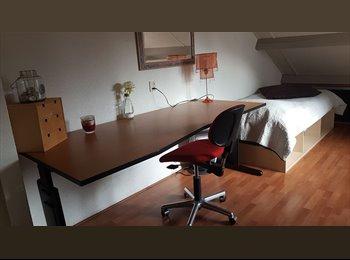 EasyKamer NL - mevr., Dordrecht - € 325 p.m.