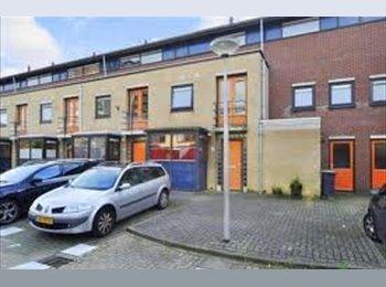 EasyKamer NL -  kleine kamer met een Frans balkon - Delft, Delft - € 300 p.m.