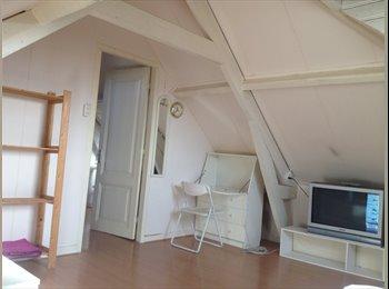 Spacious Loft Room / Ruime zolderkamer