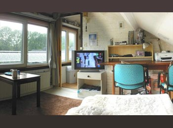 EasyKamer NL - Large furnished room near HAN and Larenstein, Arnhem - € 455 p.m.