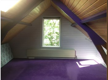 Rooms for rent in Rotterdam NOrth