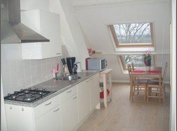 Gemeub. studio met eigen keuken en badkamer, Delft
