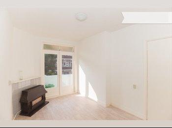 Twee kamers voor een dame te huur in Den Haag