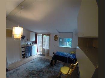 EasyKamer NL - Frisse studio in rustige omgeving - Rivierenbuurt, Amsterdam - € 650 p.m.