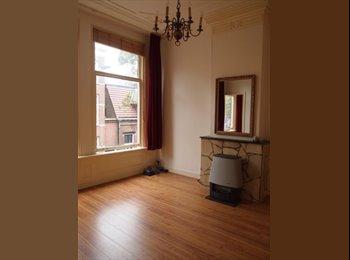 Dubbele kamer in Delft voor werkende dame