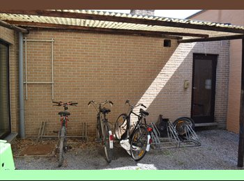 EasyKamer NL - studentenkamers te huur/ for rent - Buitenwijk West, Maastricht - € 215 p.m.
