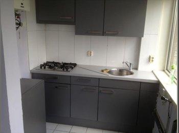 EasyKamer NL - 3 room apartment in Rotterdam Delfshaven - Oud-Mathenesse, Rotterdam - € 550 p.m.