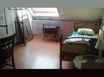 EasyKamer NL - Room overlooking garden ***FEMALE ONLY*** - Osdorp-Midden, Amsterdam - € 540 p.m.