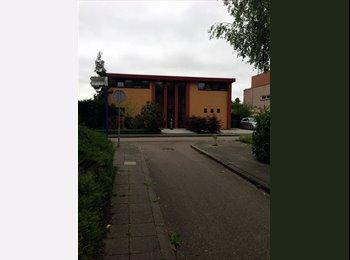 EasyKamer NL - Gemeubileerde kamer met terras - Almere, Almere - € 375 p.m.