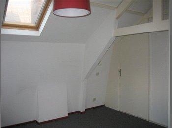 2 woonruimtes te huur met badk met uitzicht
