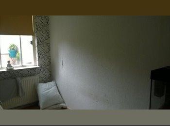 EasyKamer NL - een leuke kamer - Almere, Almere - € 375 p.m.