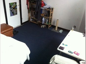 EasyKamer NL - Two months living in a palace - Delft, Delft - € 350 p.m.
