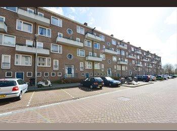 EasyKamer NL - Room to Rent Amsterdam Geuzenveld/Slotermeer - Geuzenveld, Amsterdam - € 600 p.m.