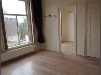 EasyKamer NL - Appartementje met eigen keuken en douche, Delft - Delft, Delft - € 625 p.m.