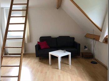 EasyKamer NL - Studio met eigen keuken en badkamer., Arnhem - € 550 p.m.