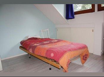 EasyKamer NL - Te huur gemeubileerde kamer in Enschede €295,- All-in - Enschede, Enschede - € 295 p.m.