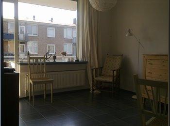 EasyKamer NL - lovely appartment for rent - Delft, Delft - € 455 p.m.