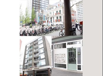 EasyKamer NL - Studentenkamer midden in het centrum - Stadsdriehoek, Rotterdam - € 510 p.m.