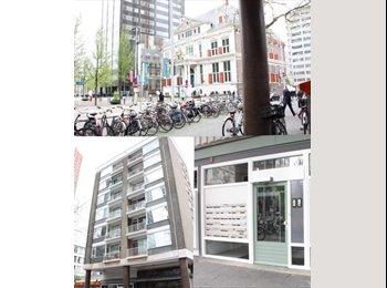 EasyKamer NL - Studenkamer in hartje centrum - Stadsdriehoek, Rotterdam - € 480 p.m.