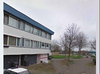 EasyKamer NL - Te huur kamers in Enschede €400,- All-in, Enschede - € 400 p.m.
