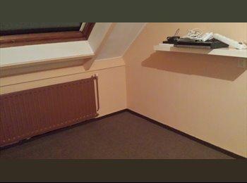 EasyKamer NL - mooie ruime kamer te huur Schermerhorn - Alkmaar, Alkmaar - € 350 p.m.