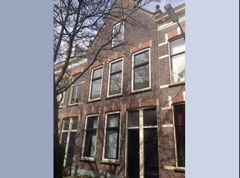 EasyKamer NL - luxe kamer met groot raam en inbouwkasten - Dordrecht, Dordrecht - € 425 p.m.