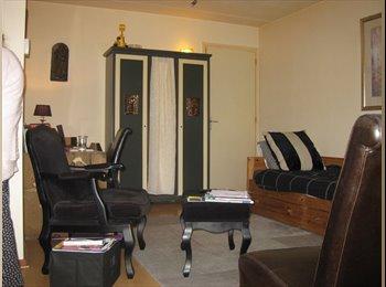 EasyKamer NL - knusse studio te huur in Leersum - Driebergen, Driebergen - € 495 p.m.
