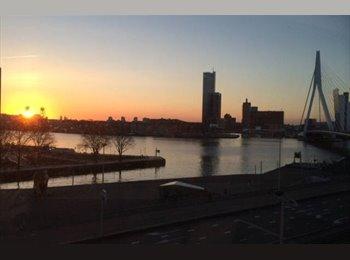 EasyKamer NL - Private Room Luxury Skyline Apartment - Stadsdriehoek, Rotterdam - € 775 p.m.
