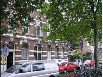 EasyKamer NL - Nice, unfurnished 2 rooms apartment in Delft - Delft, Delft - € 850 p.m.