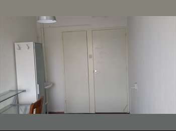 2 Rooms available now