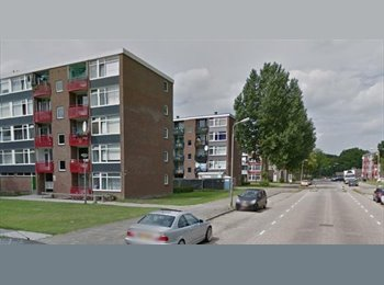 EasyKamer NL - Te huur leuke kamer Deventer €300,- All-in.  - Deventer, Deventer - € 300 p.m.