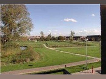 EasyKamer NL - kamers te huur nabij Utrecht, met div. luxe, Utrecht - € 575 p.m.