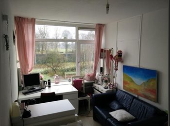EasyKamer NL - Te huur leuke kamer Deventer €295,- All-in., Deventer - € 295 p.m.