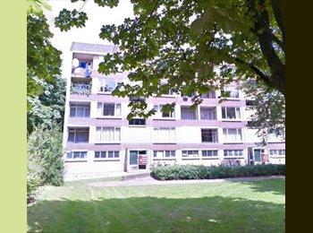 EasyKamer NL - Te huur ruime gemeubileerde kamer Enschede €375,- All-in.  - Enschede, Enschede - € 375 p.m.