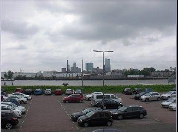 EasyKamer NL - Studio  close to the Erasmus University. - De Esch, Rotterdam - € 580 p.m.