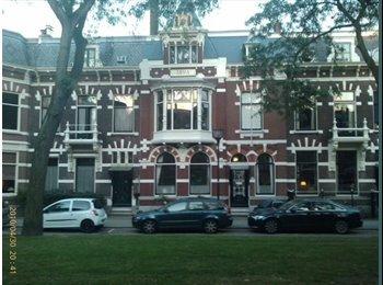 EasyKamer NL - Furnished Room in Rotterdam Kralingen - Kralingen-Oost, Rotterdam - € 695 p.m.