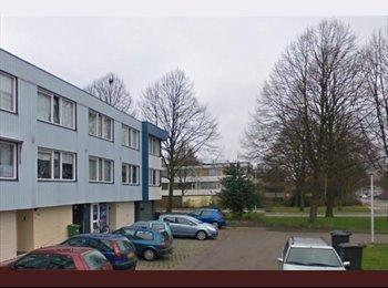 EasyKamer NL - Te huur grote kamer Enschede €385 All-in.  - Enschede, Enschede - € 385 p.m.