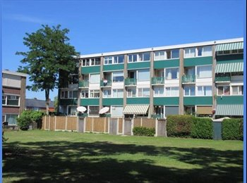 EasyKamer NL - Te huur kamer 12 m2 Enschede €335,- per maand All-in.  - Enschede, Enschede - € 335 p.m.