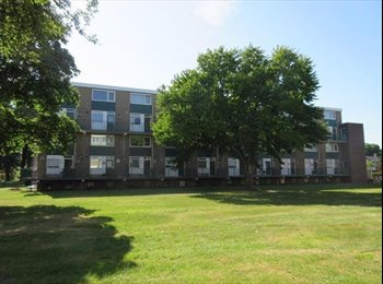 EasyKamer NL - Te huur kamer Enschede €300,- per maand All-in. - Enschede, Enschede - € 300 p.m.