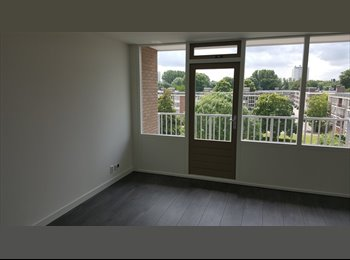 EasyKamer NL - New Apartment in Amsterdam South, Amsterdam - € 650 p.m.