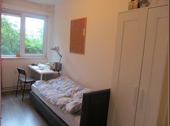 EasyKamer NL - Kamer te huur, Utrecht - € 420 p.m.