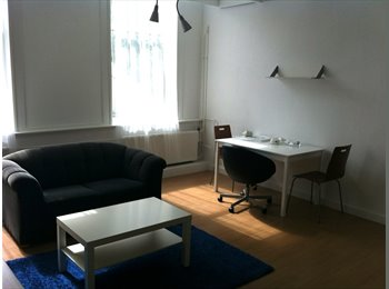 EasyKamer NL - Nice and quiet room for rent at a beautifull location in Rotterdam., Rotterdam - € 650 p.m.