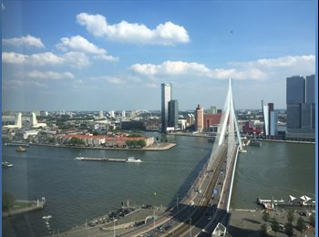 EasyKamer NL - Rent room, Rotterdam - € 700 p.m.
