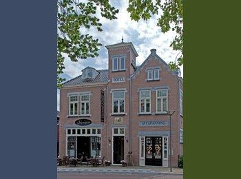 Luxe appartement in gerenoveerd pand, centrum Assendelft