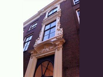 EasyKamer NL - Mooie kamer in monumentaal pand in centrum van Arnhem, Arnhem - € 390 p.m.