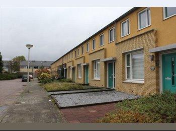 EasyKamer NL -  Te huur gemeubileerde kamer Enschede €395,- All-in, Enschede - € 395 p.m.