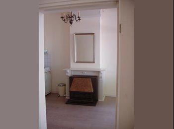 EasyKamer NL - Beautiful independent apartment on TOP location in city Leiden, Leiden - € 760 p.m.