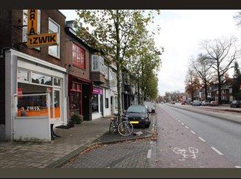 EasyKamer NL - Te huur ruime kamer nabij centrum Enschede €400,- per maand, Enschede - € 400 p.m.